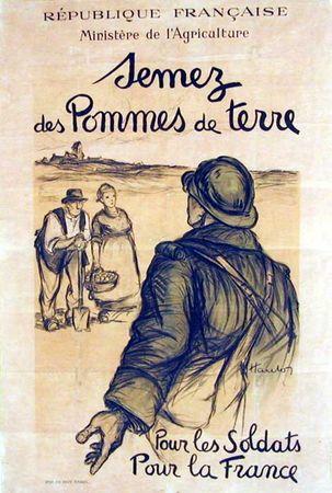 Semez des Pommes de terre pour la France